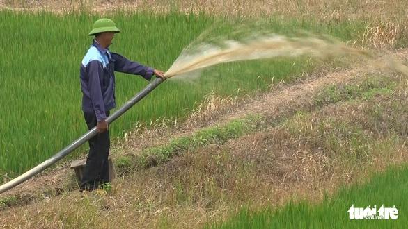 Nghịch lý ở Đắk Lắk: Hơn 1.000ha cây trồng chết khát trong khi nhiều khu vực ngập lụt - Ảnh 5.