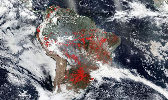 9.500 vụ cháy 1 tuần, rừng Amazon lá phổi Trái đất biến dạng khủng khiếp - Ảnh 5.