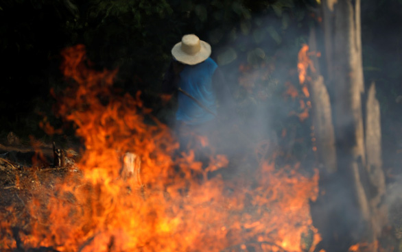 Brazil thừa nhận không đủ sức dập cháy rừng Amazon - Ảnh 2.