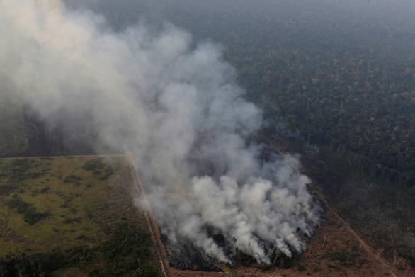 Brazil thừa nhận không đủ sức dập cháy rừng Amazon - Ảnh 1.