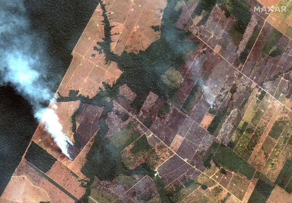 Tổng thống Brazil chỉ trích quốc tế xen vào việc nội bộ trong vụ cháy rừng Amazon - Ảnh 3.