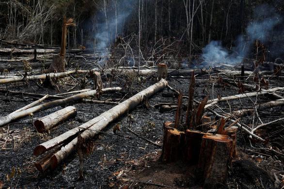 9.500 vụ cháy 1 tuần, rừng Amazon lá phổi Trái đất biến dạng khủng khiếp - Ảnh 2.