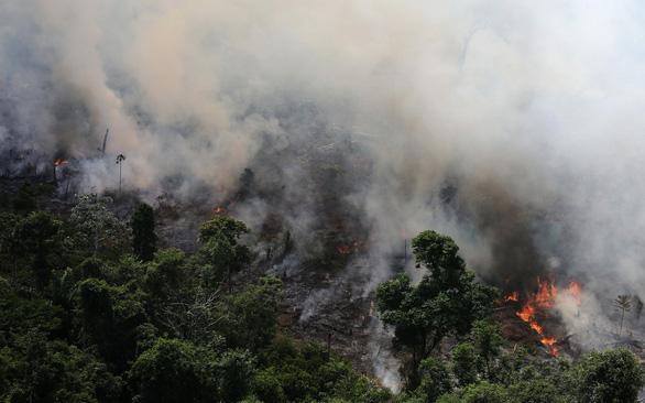 Lá phổi hành tinh Amazon đang cháy kỷ lục - Ảnh 1.