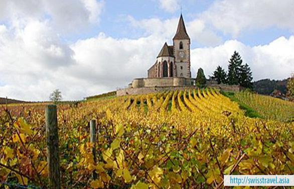 Tour tham quan Pháp, Thụy Sĩ, Ý, Vatican 10 ngày - Ảnh 3.