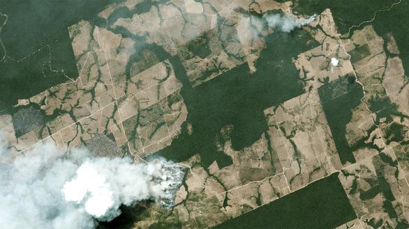 Brazil triển khai quân đội dập lửa cứu lá phổi xanh Amazon vì áp lực quốc tế - Ảnh 4.