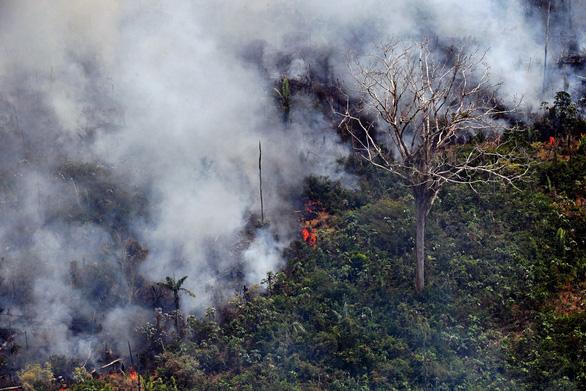 Brazil triển khai quân đội dập lửa cứu lá phổi xanh Amazon vì áp lực quốc tế - Ảnh 3.