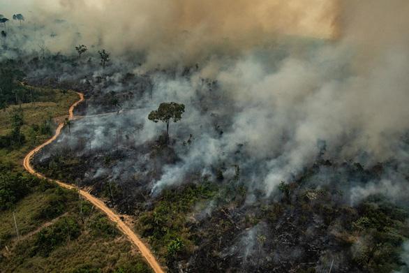 G7 nhất trí hỗ trợ khẩn để ngăn cháy rừng Amazon - Ảnh 2.