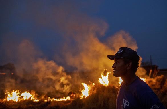 G7 nhất trí hỗ trợ khẩn để ngăn cháy rừng Amazon - Ảnh 3.