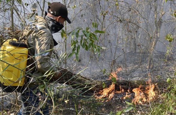 G7 nhất trí hỗ trợ khẩn để ngăn cháy rừng Amazon - Ảnh 5.