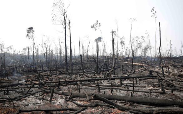 Cháy rừng Amazon hâm nóng G7 ở Pháp - Ảnh 1.