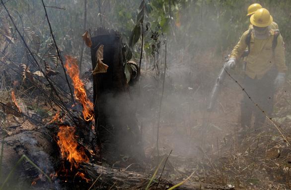 Cháy rừng Amazon ảnh hưởng gì đến thế giới? - Ảnh 1.