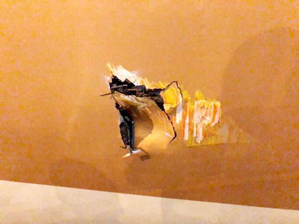 Xe thang đâm lủng thân máy bay Boeing 787 của Vietnam Airlines - Ảnh 1.