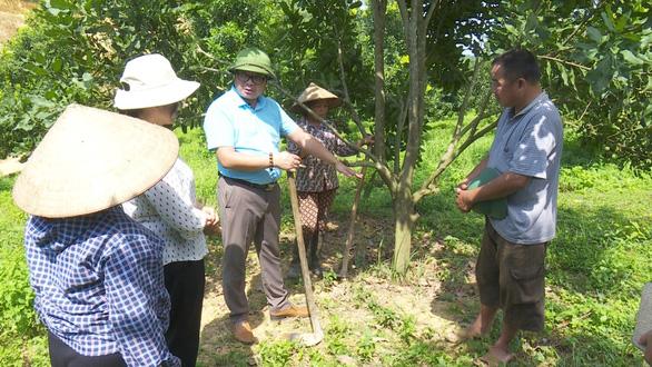 Sắp có thêm 5.000 ha cây tỉ đô từ Macca Nutrition Việt Nam - Ảnh 2.