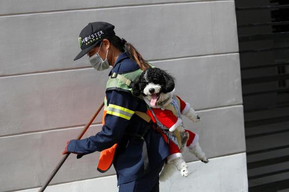 Địu chó đi quét đường, cô công nhân môi trường gây bão mạng - Ảnh 1.