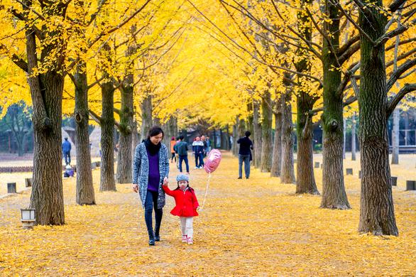 Những điểm hẹn lý tưởng cho người yêu mùa thu - Ảnh 2.