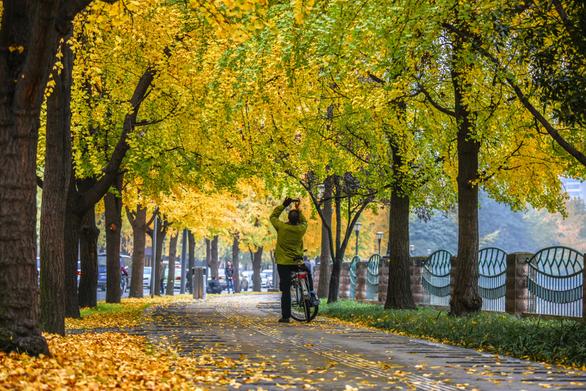 Những điểm hẹn lý tưởng cho người yêu mùa thu - Ảnh 3.
