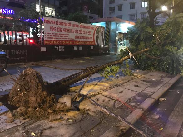 Cây đổ la liệt trên đường phố Hà Nội, 1 người chết, 1 người bị thương - Ảnh 4.
