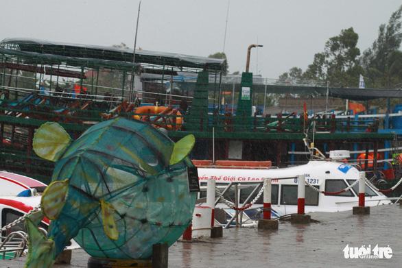 Dừng hoạt động tàu ra vào Cù Lao Chàm, đưa 125 người vào bờ - Ảnh 5.