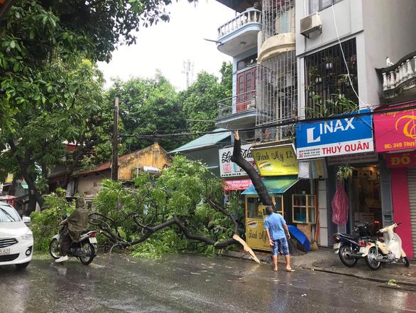 Hà Nội phố phường mênh mông nước, cây xanh đổ la liệt - Ảnh 5.