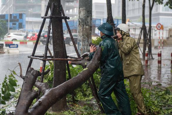 Hà Nội phố phường mênh mông nước, cây xanh đổ la liệt - Ảnh 6.