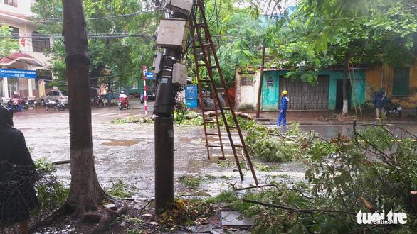 Bão số 3 qua Móng Cái, Hải Phòng, gió giật hàng loạt cây xanh ngã rạp - Ảnh 9.