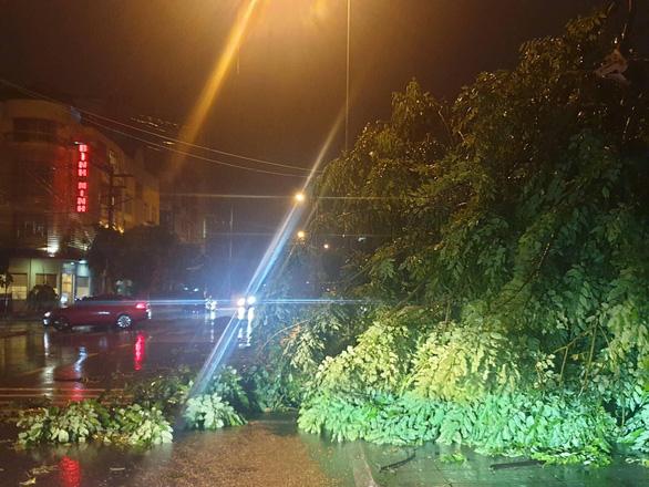 Bão số 3 qua Móng Cái, Hải Phòng, gió giật hàng loạt cây xanh ngã rạp - Ảnh 5.