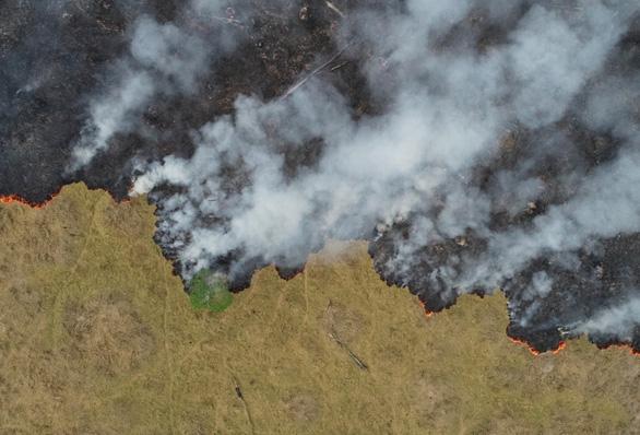 Thêm hơn 1.600 đám cháy mới tại Amazon, Brazil cấm đốt rẫy 2 tháng - Ảnh 1.