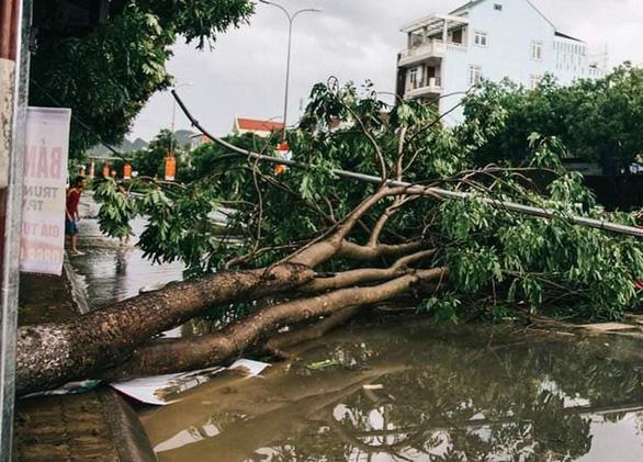 Bão số 4 đổ bộ Hà Tĩnh - Quảng Bình, suy yếu thành áp thấp nhiệt đới - Ảnh 1.