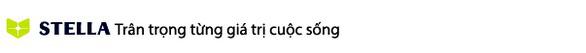 Thay đổi tên gọi của Công ty TNHH liên doanh STADA-Việt Nam - Ảnh 4.