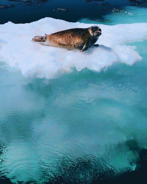 Thăm hồ nước ngọt sâu nhất, lâu đời nhất thế giới - Ảnh 3.