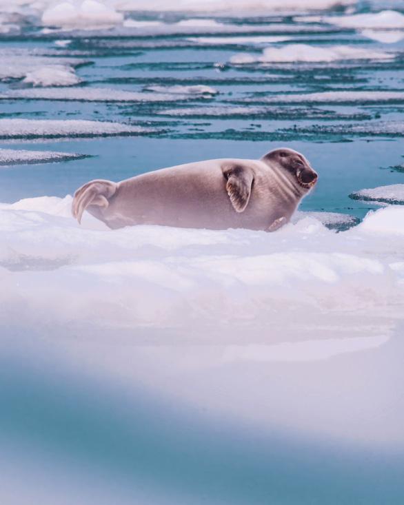 Thăm hồ nước ngọt sâu nhất, lâu đời nhất thế giới - Ảnh 5.
