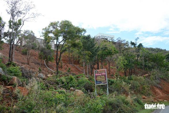 San ủi đất rừng, lấn chiếm hành lang đường bộ để lập trạm dừng chân - Ảnh 3.