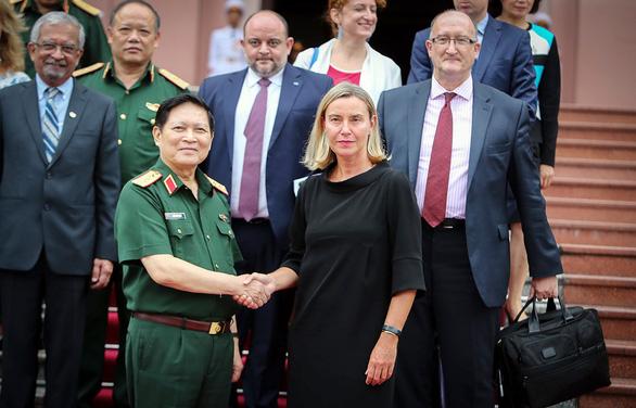 Hợp tác quốc phòng Việt Nam - EU phát triển tích cực - Ảnh 1.
