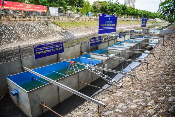 Chuyên gia Nhật Bản tắm sông Tô Lịch sau xử lý - Ảnh 5.