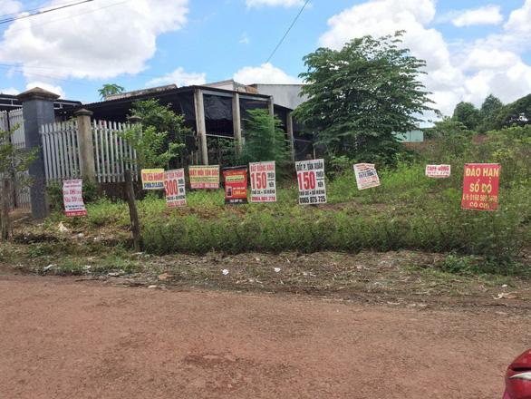 Bình Phước tạm dừng tiếp nhận hồ sơ tách thửa đất nông nghiệp - Ảnh 1.