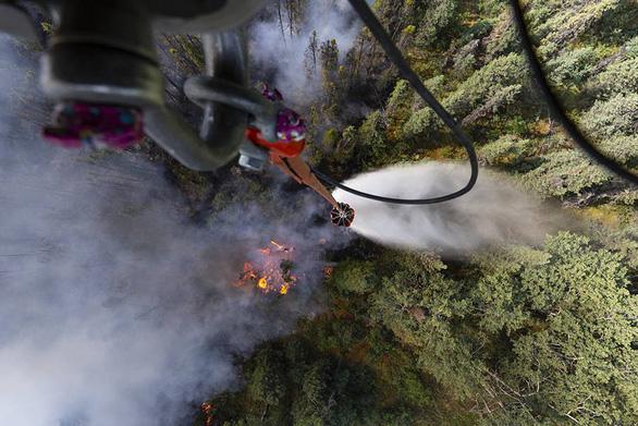 Sau Amazon, thảm họa cháy rừng lan tới... Bắc Cực - Ảnh 5.