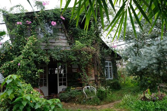 Người Đà Lạt dỡ nhà kính để trồng vườn truyền thống - Ảnh 12.