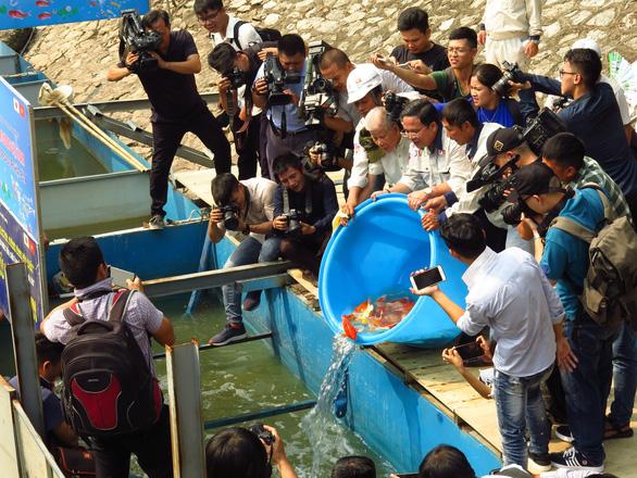 Thả cá Koi Nhật Bản xuống sông Tô Lịch - Ảnh 6.