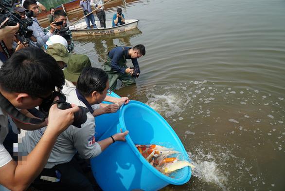 Thả cá Koi Nhật Bản xuống sông Tô Lịch - Ảnh 8.