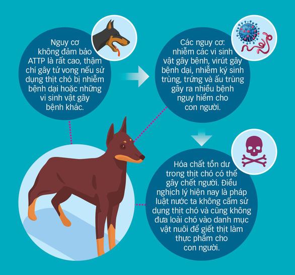 Thịt chó: Mất kiểm soát khâu giết mổ, dịch bệnh - Ảnh 1.