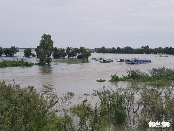 Lũ đầu nguồn sông Cửu Long trên báo động 1, diễn biến phức tạp - Ảnh 1.
