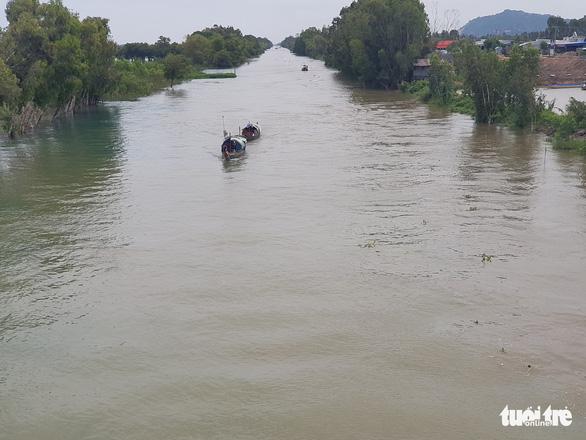 Lũ đầu nguồn sông Cửu Long trên báo động 1, diễn biến phức tạp - Ảnh 2.