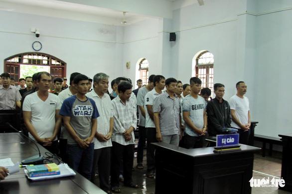 Phạt trùm gỗ lậu Phượng 'râu' 8 năm 6 tháng tù - Ảnh 1.
