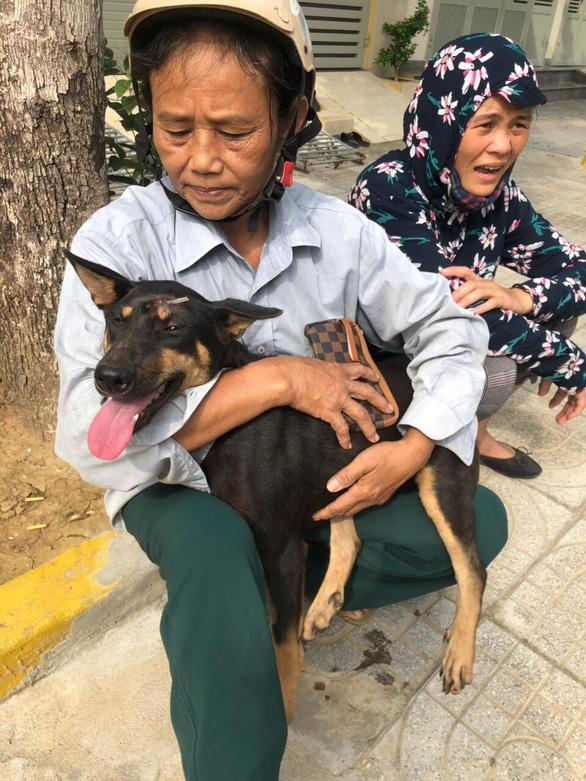 Liên minh bảo vệ chó châu Á chăm sóc đàn chó tạm giữ ở Công an Thanh Hóa - Ảnh 3.