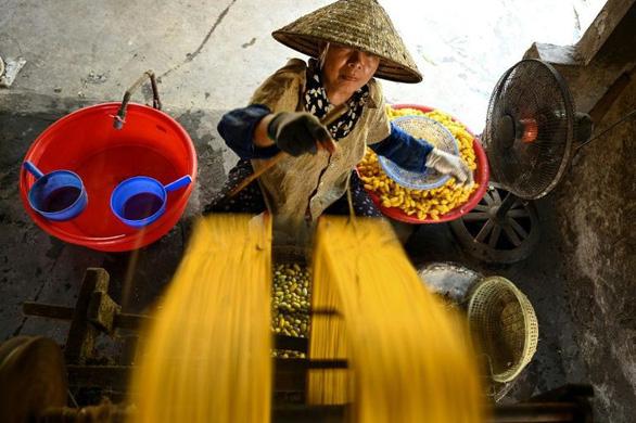 Làng tơ trăm năm ở Nam Định lên AFP - Ảnh 1.