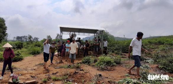 Hàng nghìn cây keo bị nhổ trơ gốc, chính quyền xã nói do nhầm tên - Ảnh 5.