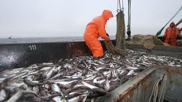 Nga bắt 3 tàu cá Triều Tiên với hơn 250 ngư dân - Ảnh 1.
