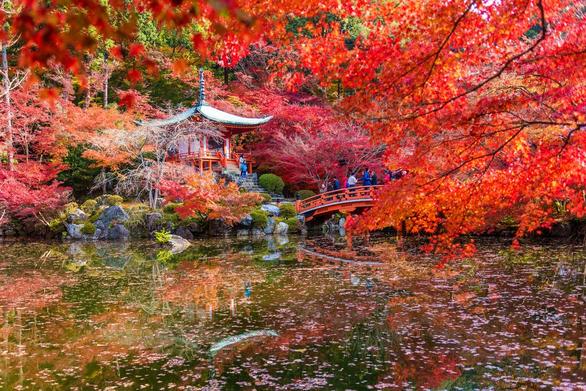 9 địa điểm tha hồ ngắm mùa thu ở châu Á - Ảnh 1.