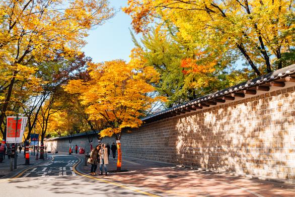 9 địa điểm tha hồ ngắm mùa thu ở châu Á - Ảnh 3.