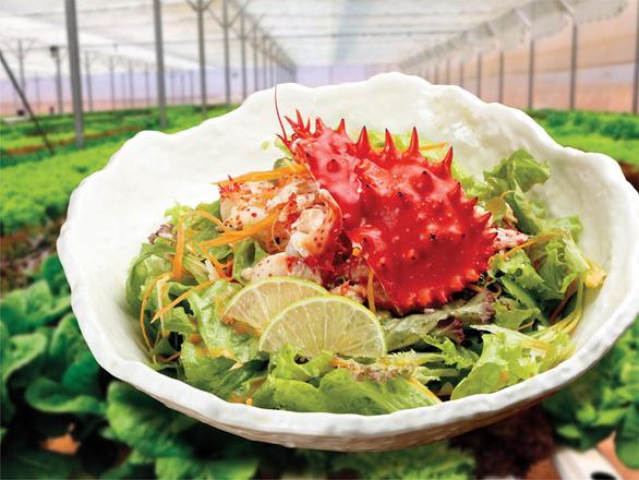Cùng thực khách sành ăn thưởng thức cua Hanasaki - Món ngon trong mùa Nhật Bản - Ảnh 6.